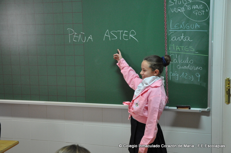 Shela aster02