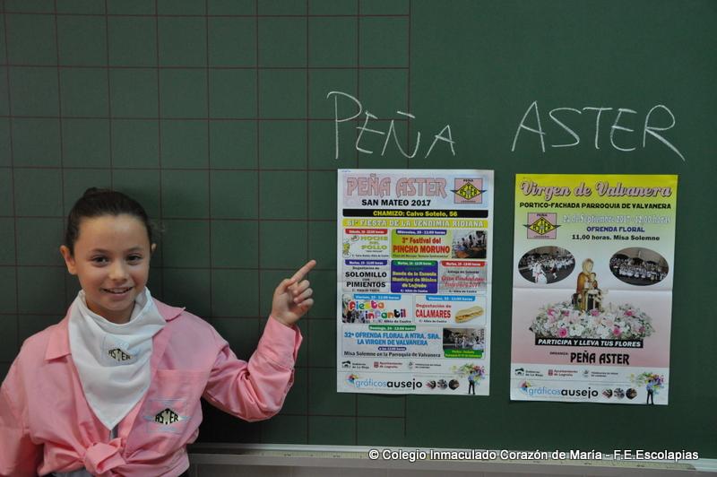 Shela aster03